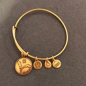 Alex and Ani bracelet Pisces